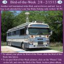 BirdofWeek2B0208132BLosh.jpg
