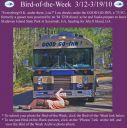 BirdofWeek2B0312102B2BGood2BGo-Inn.jpg