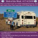 BirdofWeek2B0417092BSmith2Bpt2.jpg