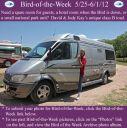 BirdofWeek2B0525122BKay2BToad.jpg
