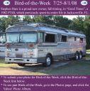 BirdofWeek2B0725082BHare.jpg