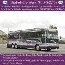 BirdofWeek2B0815082BArnold.jpg