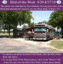 BirdofWeek2B0820102BLone2BStar2BBirds.jpg