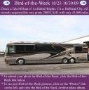 BirdofWeek2B1023092BMillsap.jpg