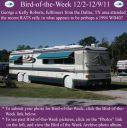 BirdofWeek2B1202112BRoberts.jpg