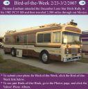 BirdofWeek_022307_Eastham.jpg