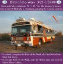 BirdofWeek_032108_Anderson.jpg