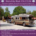 BirdofWeek_032406_Olson.jpg