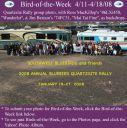 BirdofWeek_041108_SWBB_Q-site2.jpg