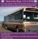 BirdofWeek_052308_Sprenger.jpg