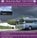 BirdofWeek_072007_Wright.jpg