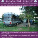 BirdofWeek_072905_AlvieMiller.jpg