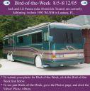 BirdofWeek_080505a_Pearce.jpg