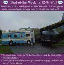 BirdofWeek_081205_woody.jpg