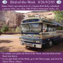BirdofWeek_082605_Shane_Fedeli.jpg