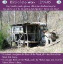 BirdofWeek_120905_Smalley-1.jpg