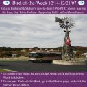BirdofWeek_121407_McMahan.jpg